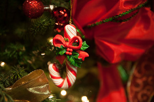Christmas at Andrews. Holiday celebrations and events of the season